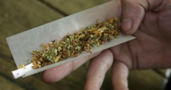 """Legalizzazione """"droghe leggere"""".  Orlando scrive ai Presidenti di Camera e Senato"""