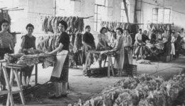 fabbrica-festa-della-donna-625x325