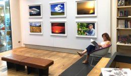 Forum Art Gallery - foto