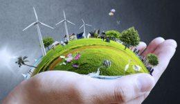 giornata-mondiale-ambiente-2014-galdo-uno-mattina-rai-uno-2