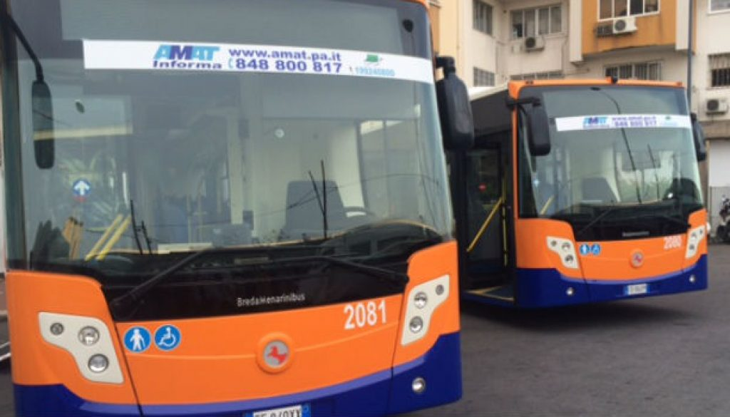 autobus-nuovi-amat