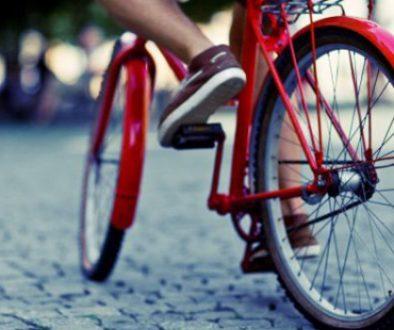 e20548c95d6ad7421b534d63300ad49e34e33e41-bicicletta-jpg-18801-1565345749