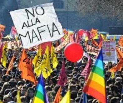 no mafia1